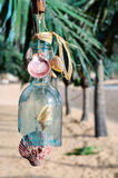 Decorated glass bottle on a Tropical beach Stock Image