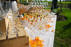 Decorated glasses Stock Images
