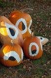 decorated halloween pumpkins στοκ φωτογραφία με δικαίωμα ελεύθερης χρήσης