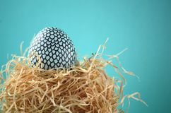 Decorated handpainted mint blue and black snakeskin patter Easter egg in a straw nest on turquoise teal background with copy space. Decorated hand painted mint Royalty Free Stock Photography