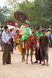 Decorated horse, buffalo and local people who participated in the donation channeled ceremony in Bagan. Myanmar, Burma Royalty Free Stock Photography