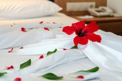 Decorated Hotel Bed Stock Photography