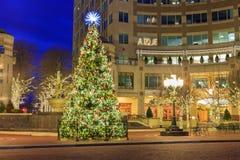 Decorated Illuminated Christmas Tree Virginia Stock Photography