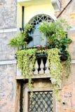 Decorated Italian Window Royalty Free Stock Photos