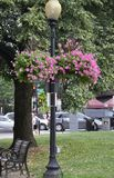 Decorated Lamp in the Park from Washington DC in USA Stock Photo