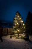 Decorated by lights christmas tree at night Stock Photos