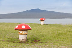 The decorated mushroom vents with blurred Rangitoto Island backg Royalty Free Stock Photo