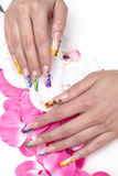 Decorated nails Stock Photography