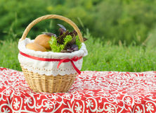 Decorated picnic basket with buns and bunch of basil and salad, green landscape Royalty Free Stock Photo