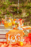 Decorated picnic with oranges and lemonade in the summer Royalty Free Stock Images