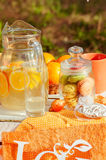 Decorated picnic with oranges and lemonade in the summer Stock Photo