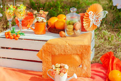 Decorated picnic with oranges and lemonade in the summer Royalty Free Stock Photos