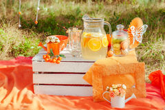 Decorated picnic with oranges and lemonade in the summer Stock Images