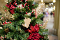 Decorated pine in new year. In trading floor Stock Images