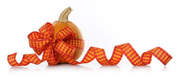 Decorated pumpkin Royalty Free Stock Images