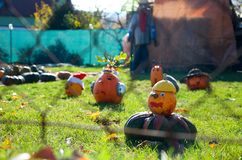 Decorated pumpkings in a garden Stock Images