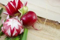 Decorated red radish on a wooden surface. Decorated red radish on a rough wooden surface Stock Image