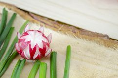 Decorated red radish on a wooden surface Stock Image