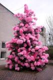 Decorated sörjer trädet utanför Royaltyfri Fotografi