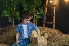 Decorated studio cute boy playing with gosling Royalty Free Stock Photo