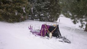 Decorated table in Gothic style in heavy snow. Decorated table in Gothic style outdoors in heavy snow. Table with a black cloth, candles and the skull of an stock video footage
