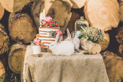 Decorated table for two decorated with floral composition wood background with 2 rabbits Stock Image