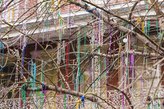 Decorated Tree in New Orleans, Louisiana. Tree decorated with colorful necklaces. New Orleans, Louisiana, United States royalty free stock photos