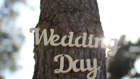 Decorated tree at wedding. Vintage wooden inscription wedding day at forest tree stock video footage