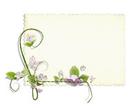 Decorated vintage card Stock Image