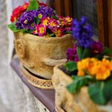 Decorated window sill with spring flowers in pots royalty free stock image