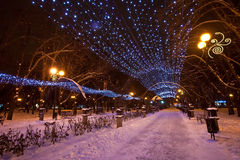 Decorated winter city park Stock Photography