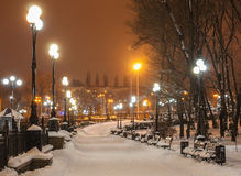 Decorated winter city park Royalty Free Stock Photos