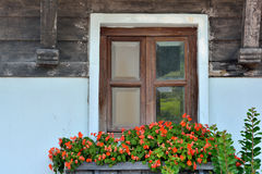Decorated wooden window of aged architecture. Wooden window decorated by plant and flower, shown as featured architecture pattern and beautiful living Stock Photos