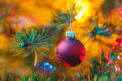 Decorated x-mas tree Royalty Free Stock Photography