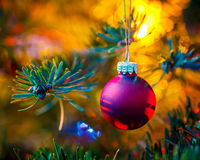 Decorated x-mas tree Royalty Free Stock Image