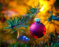 Decorated x-mas tree Royalty Free Stock Image