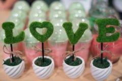 Decoratee nella forma di amore in vaso Immagini Stock Libere da Diritti