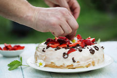 Decorates the cake Royalty Free Stock Photography