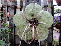 Decoratie in de vorm van een bloem op fenceÑŽ Stock Fotografie