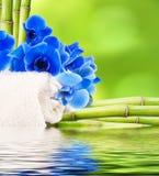 Decoratie en bloemachtergronden Stock Afbeeldingen