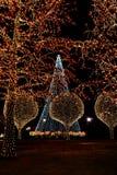 Decoratie op bomen bij nacht voor Kerstmis Stock Foto's