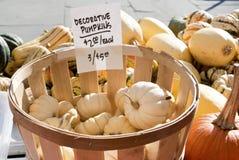 Decoratie Pumpkins Stock Photo