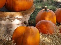 Decoratie voor de Werf en het Huis van Halloween Stock Fotografie