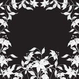 Decoratief frame met rond bloemen, vectorillustratie Stock Foto