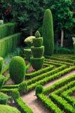 Decoratief groen park - Botanische tuin Funchal, stock foto