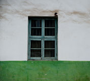 Decoratief groen venster Stock Foto's