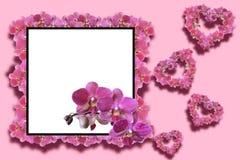 Decoratief kader met orchideeën Stock Foto's