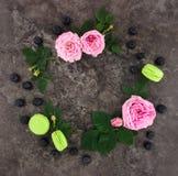 Decoratief kader met roze heldere rozen op donkere achtergrond royalty-vrije stock afbeeldingen