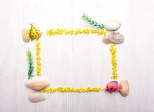 Decoratief kader met zeeschelpen Stock Afbeeldingen