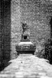 Decoratief monument in de vorm van leeuw De Zwart-witte foto van Peking, China Stock Fotografie